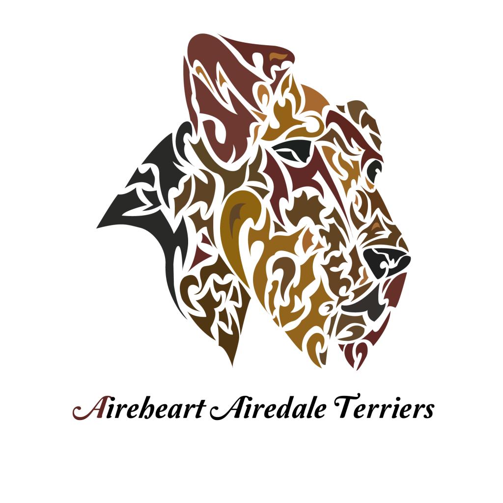 aireheart logo