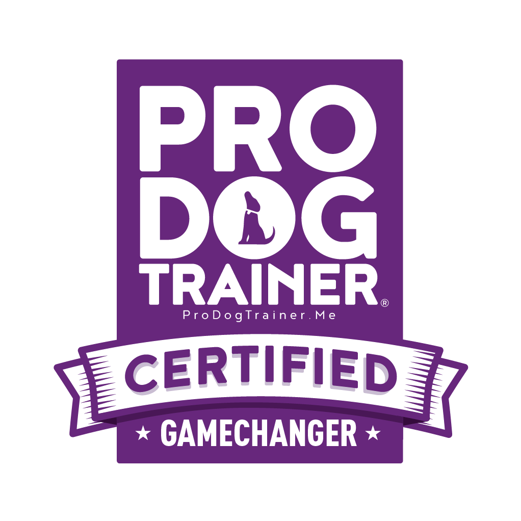 absolute dog pro trainer certified